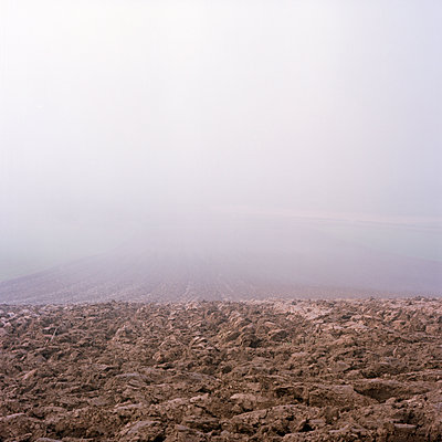 Nebelwand - p1224m1064813 von häseker