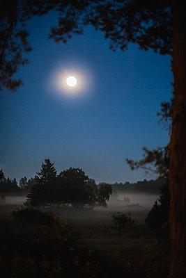 Moonlight over misty fields - p1418m1552953 by Jan Håkan Dahlström