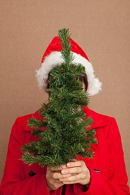 Christmas time - p454m668237 by Lubitz + Dorner