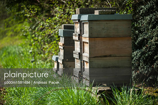 Germany, Beehives on harm - p300m1581484 von Andreas Pacek