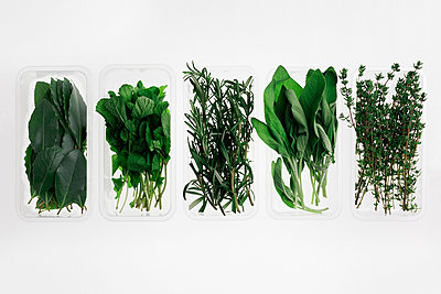Directly above shot of herbs in containers on white background - p301m1101943f by Norman Posselt