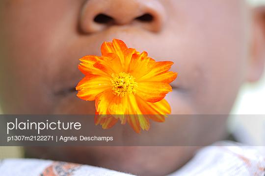 Orange Flower - p1307m2122271 by Agnès Deschamps