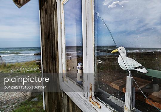 Seagull sculpture seen through window - p312m2119165 by Johner