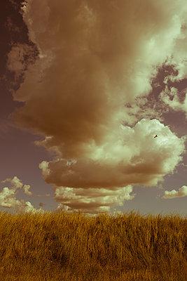 Dänemark, Dramatischer Himmel - p179m2231797 von Roland Schneider