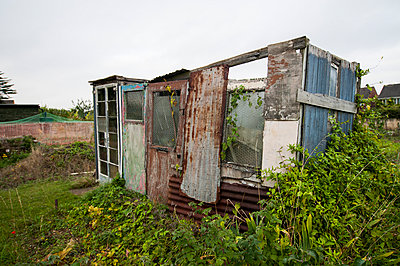 Row of dilapidated sheds on an allotment - p1047m1055603 by Sally Mundy
