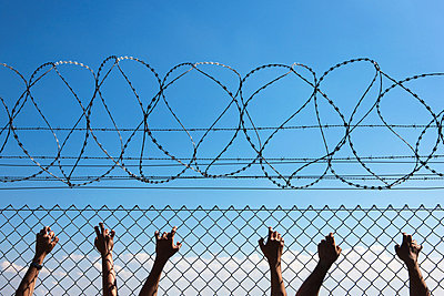 Three people's hands on wire fence - p9241660 by Studio S