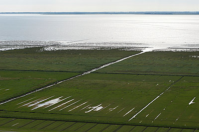 Küstenlandschaft bei Pellworm - p1079m890346 von Ulrich Mertens