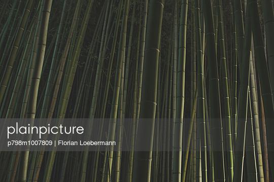 Arashiyama, Kyoto Japan - p798m1007809 von Florian Loebermann