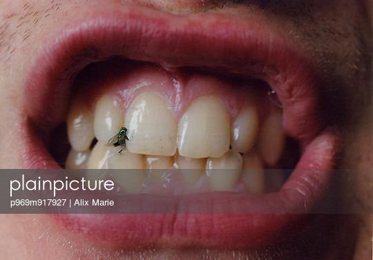 Fliege zwischen den Zähnen - p969m917927 von Alix Marie