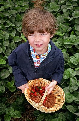 Fruit crops - p0180211 by Yoo