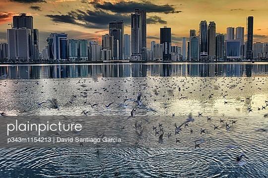 p343m1154213 von David Santiago Garcia