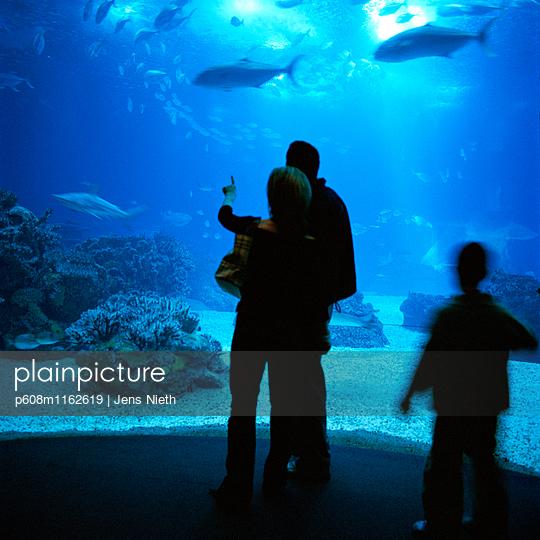 Aquarium - p608m1162619 von Jens Nieth