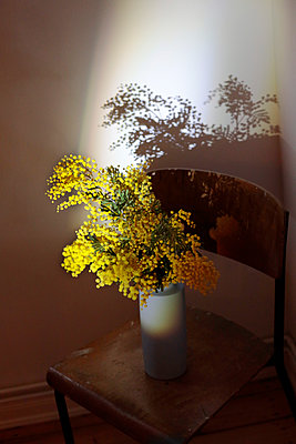 Blumenstrauß - p1174m2244742 von lisameinen