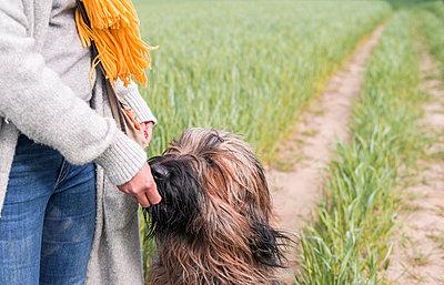 Woman feeding dog at a field - p300m2154617 by Bernd Friedel