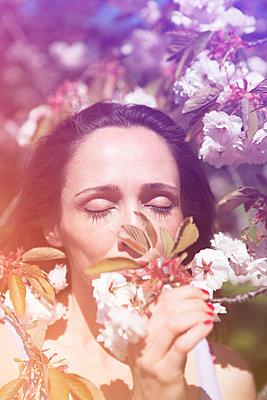 Frühlings-Romantik - p045m1171644 von Jasmin Sander