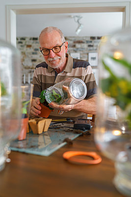 Senior man making glass biotopes at home - p300m2080765 by Albrecht Weißer