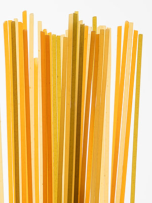 Three kinds of pasta - p401m1591596 by Frank Baquet