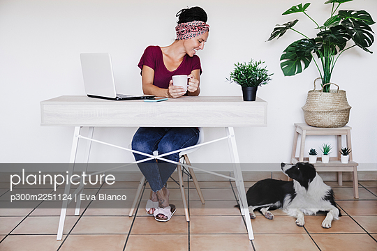 Businesswoman smiling at Border Collie while working at home against white wall - p300m2251124 by Eva Blanco