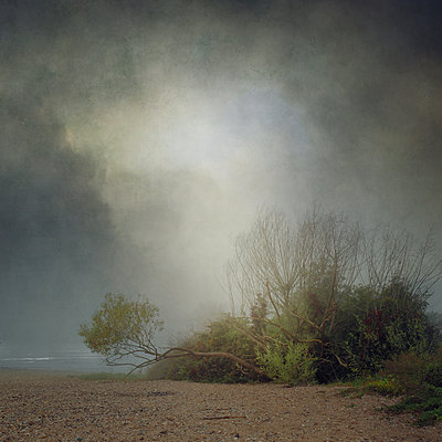 The Fog Is Clearing II - p1633m2209987 by Bernd Webler