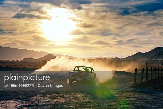 p1166m1099277f von Cavan Images