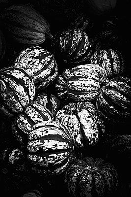 Pumpkins - p1149m1492419 by Yvonne Röder