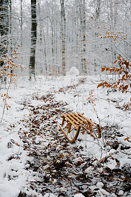 Deserted sledge in snow covered forest - p1549m2245184 by Sam Green