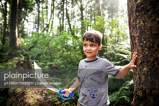 p1166m1099581f von Cavan Images