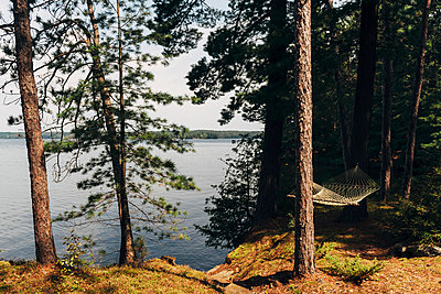 Hammock at Chandos Lake - p1065m982647 by KNSY Bande