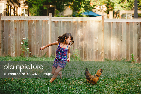 A happy child plays barefoot with a chicken in her backyard garden - p1166m2207818 by Cavan Images