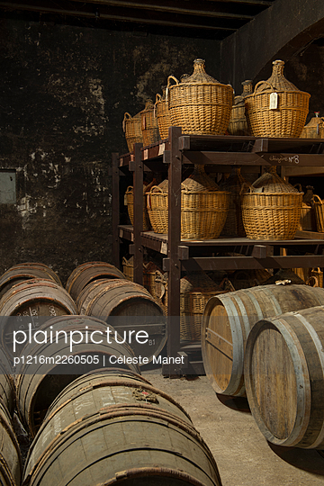 Barrels in winery cellar - p1216m2260505 by Céleste Manet
