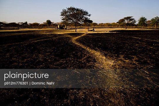 p912m776301 von Dominic Nahr