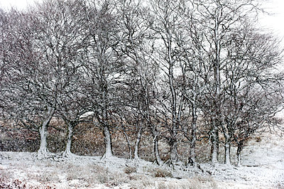 A wintry landscape on the Mynydd Epynt moorland, Powys, Wales, United Kingdom, Europe - p871m1136155 by Graham Lawrence