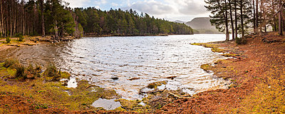 Loch an Eilein and the Rothiemurchus Forest, Aviemore, Cairngorms National Park, Scotland, United Kingdom, Europe - p871m1499854 by Matthew Williams-Ellis