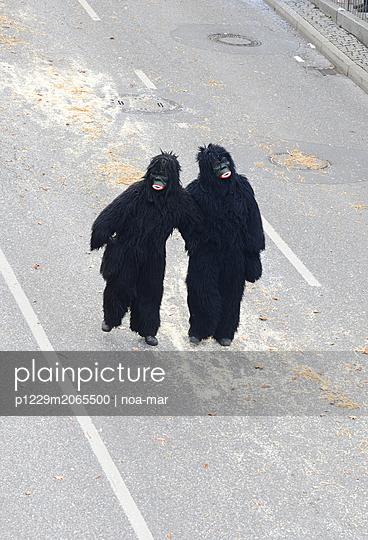 Animal costumes, Gorillas - p1229m2065500 by noa-mar