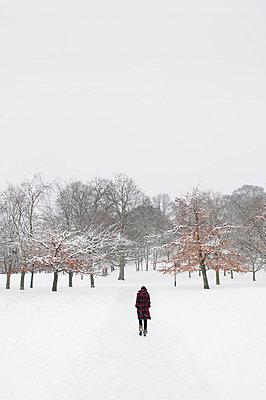 Woman in snowy landscape (V) - p1072m829405 by Neville Mountford-Hoare