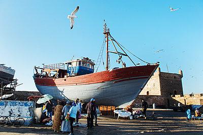 Morocco, Essaouira, Fish market - p1167m2269980 by Maria Schiffer