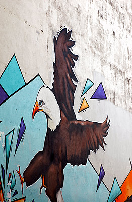 Graffiti in Reykjavik - p382m1497016 von Anna Matzen