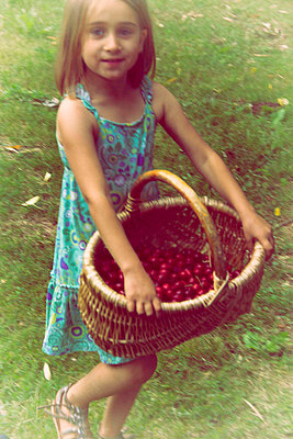 Girl with basket full of cherries - p829m919003 by Régis Domergue