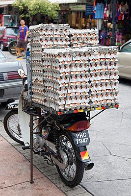 Egg supply - p631m913010 by Franck Beloncle