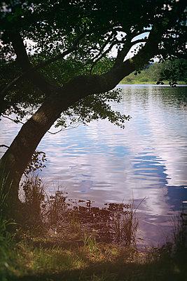 Lakeside - p1149m1152283 by Yvonne Röder