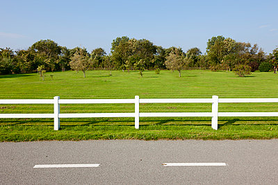 White fence - p248m952291 by BY