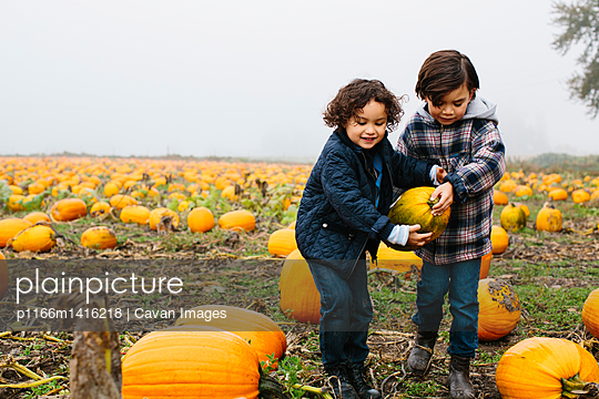 Brothers carrying pumpkin while standing at farm during foggy weather - p1166m1416218 by Cavan Images