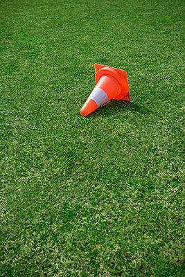 Football pitch - p1149m995689 by Yvonne Röder