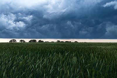 Dunkle Wolken - p1338m2196197 von Birgit Kaulfuss