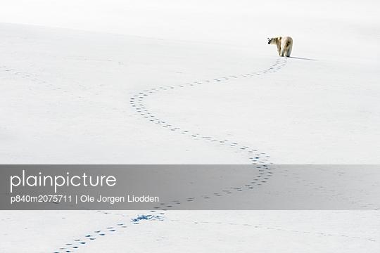 p840m2075711 von Ole Jorgen Liodden