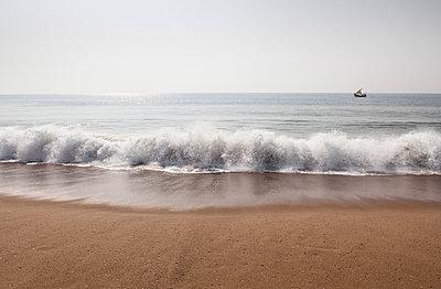 Bengalische See - p869m1109442 von Dombrowski