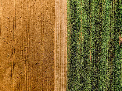 Serbia, Vojvodina, agricultural fields, aerial view at summer season - p300m1563305 by oticki
