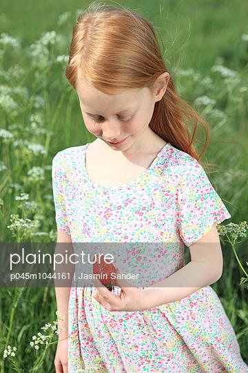 Flower field - p045m1044161 by Jasmin Sander