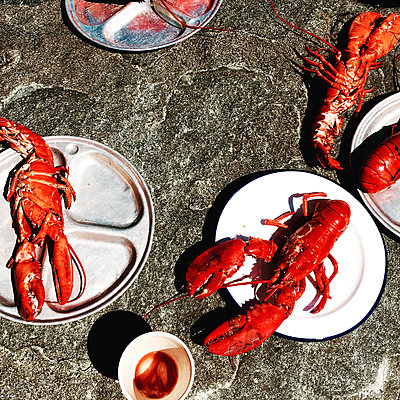 High angle view of lobsters in plates on rock during sunny day - p1166m1534164 by Cavan Social