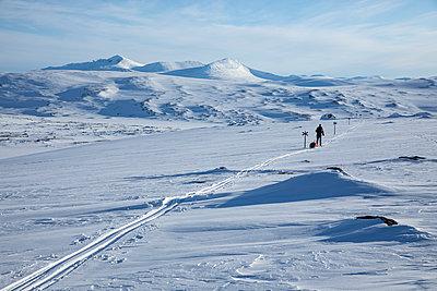Man on backcountry skiing hike pulling a ski pulk (toboggan) - p1687m2278784 by Katja Kircher